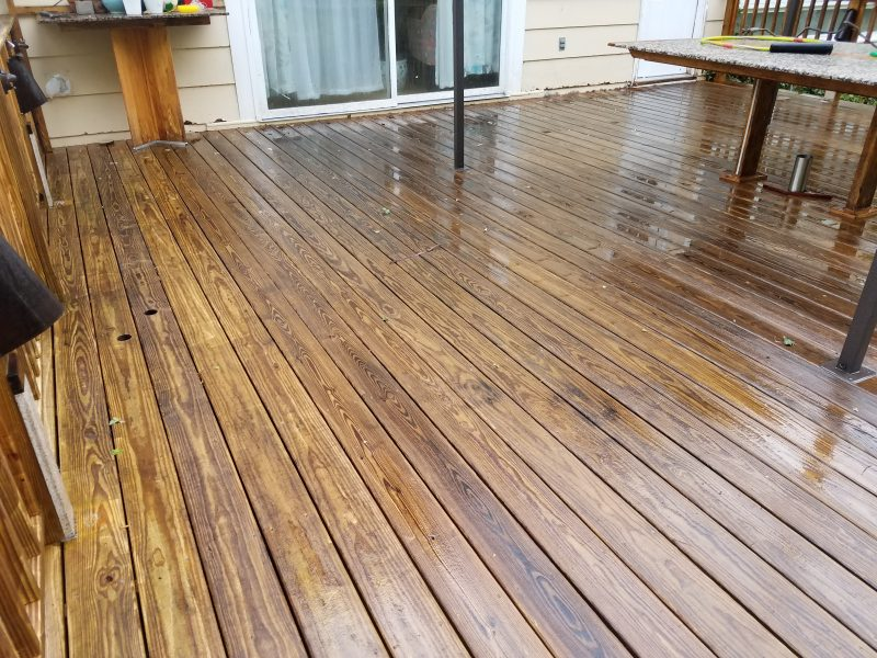 Deck and Fence Cleaning
