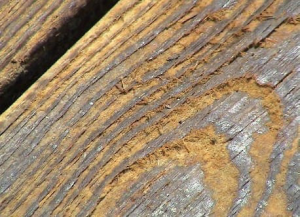 Damaged wood from pressure washing