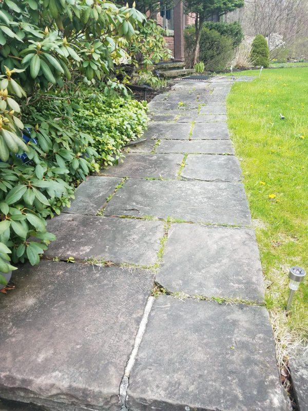 Before Stone Walkway Pressure Washing